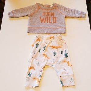 Cat and Jack Infant Outfit